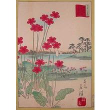 Rissho: Sakuraso at Toda Field - Ronin Gallery