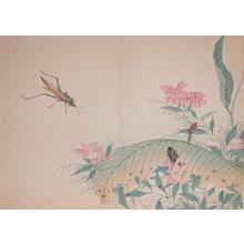 渡辺省亭: Cone-headed Grasshopper, beatles and ants. - Ronin Gallery