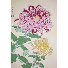 Tangyu: Chrysanthemums - Ronin Gallery