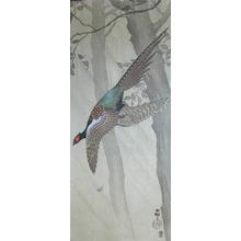 Koson: Pheasant in Flight during Rain Storm - Ronin Gallery