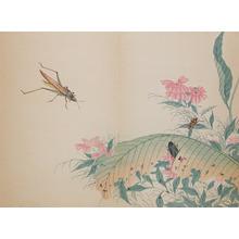 Shunkei: Katydid and Ants - Ronin Gallery
