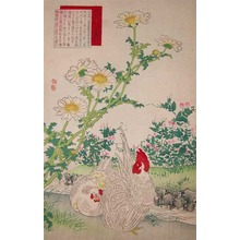 Kono Bairei: Corn Marigold and Bantams - Ronin Gallery