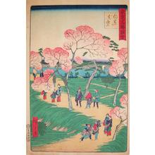 Utagawa Hiroshige II: Cherry Blossoms at Mukojima - Ronin Gallery