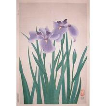 Nisaburo: Iris - Ronin Gallery