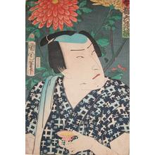 Toyohara Kunichika: Chrysanthemums - Ronin Gallery