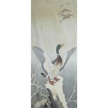 Koson: Mallard on Stump - Ronin Gallery