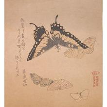 窪俊満: Butterflies - Ronin Gallery