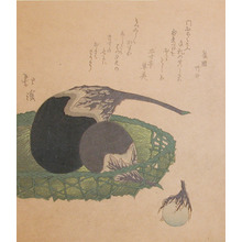 魚屋北渓: Eggplants - Ronin Gallery