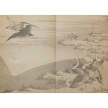 Katsushika Hokusai: Wild Geese: Fuji on the Face of a Paddy - Ronin Gallery
