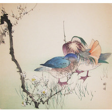 月岡耕漁: Two Mandarin Ducks and Spring Flowers - Ronin Gallery