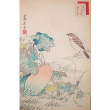Sugakudo: Nobitaki Bird and Cucumber - Ronin Gallery