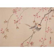 松村景文: Cherry Blossoms in Snow - Ronin Gallery