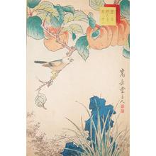 Sugakudo: Hekicho Bird and Apricots - Ronin Gallery
