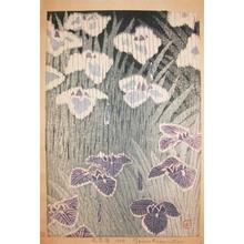 Kasamatsu Shiro: Iris - Ronin Gallery