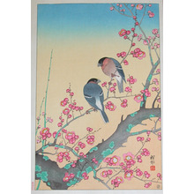 Shoson: Plum Blossoms - Ronin Gallery