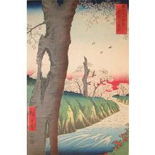 Utagawa Hiroshige: Koganei, Musashi - Ronin Gallery