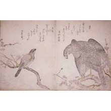 Kitagawa Utamaro: Hawk and Shrike - Ronin Gallery
