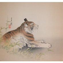 Gekko: Tiger - Ronin Gallery