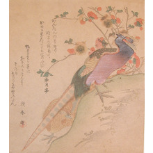 窪俊満: A Couple of Pheasants - Ronin Gallery