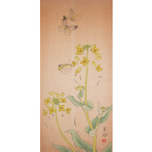 Jo: Nanohana Blossoms and Butterflies - Ronin Gallery