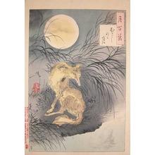 月岡芳年: Magic Fox at Musashi Plain - Ronin Gallery
