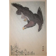 Shoson: Flight of an Eagle in Blizzard - Ronin Gallery