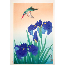 Shoson: Kingfisher and Iris - Ronin Gallery