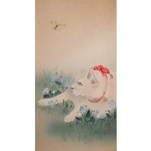 Unknown: Cat and Butterfly - Ronin Gallery