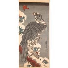 Keisai Eisen: Eagle on a Snowy Pine Branch - Ronin Gallery