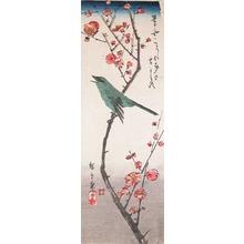 Utagawa Hiroshige: Uguisu Bird on Plum Branch - Ronin Gallery