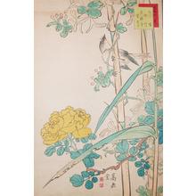 Sugakudo: Mushikui Bird, Bamboo and Rose - Ronin Gallery