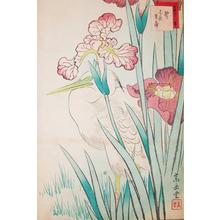 Sugakudo: Heron and Iris - Ronin Gallery