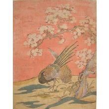 磯田湖龍齋: Pheasants Under Flowering Cherry Tree - Ronin Gallery