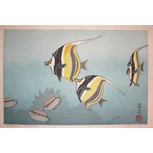 吉田遠志: Hawaiian Fishes B - Ronin Gallery
