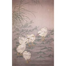Koson: Baby Chicks - Ronin Gallery