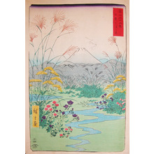 歌川広重: Fall Flowers at Otsuki-no-hara, Kai - Ronin Gallery
