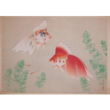 Kokyo: Goldfish - Ronin Gallery