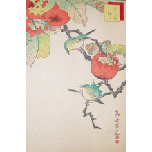 Sugakudo: White-eye Birds and Persimmons - Ronin Gallery