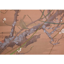 Rakuzan: Early Spring: Wild Plum and Japanese Bush Warbler - Ronin Gallery