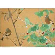 Rakuzan: Late Spring: Snow Pea and Japanese Green Finch - Ronin Gallery