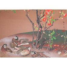 Rakuzan: Mid Spring: Buntings and Japanese Quince - Ronin Gallery