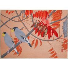 Rakuzan: Winter; Japanese Wax Tree and Masked Grosbeak - Ronin Gallery