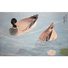 橋口五葉: Two Ducks - Ronin Gallery