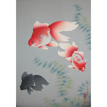 Bakufu: Goldfish - Ronin Gallery