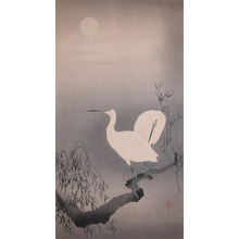 Koson: Two Egrets on a Branch in Moonlight - Ronin Gallery