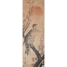 Goseki: Eagle and Plum Blossoms - Ronin Gallery