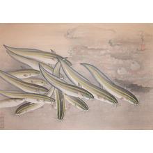 Bakufu: Loach - Ronin Gallery
