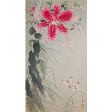 Koson: Butterflies and Large Pink Lilly - Ronin Gallery