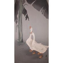 Koson: Geese and Banana Plant - Ronin Gallery