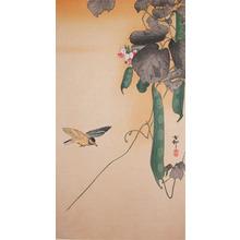 Koson: Hummingbird and Green Beans - Ronin Gallery